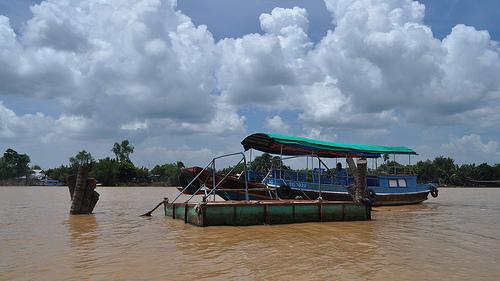 Das Mekong Delta als Heimat des Sushi?