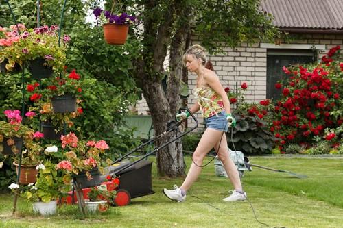 Rasen mähen - Rasenpflege - Gartenarbeit